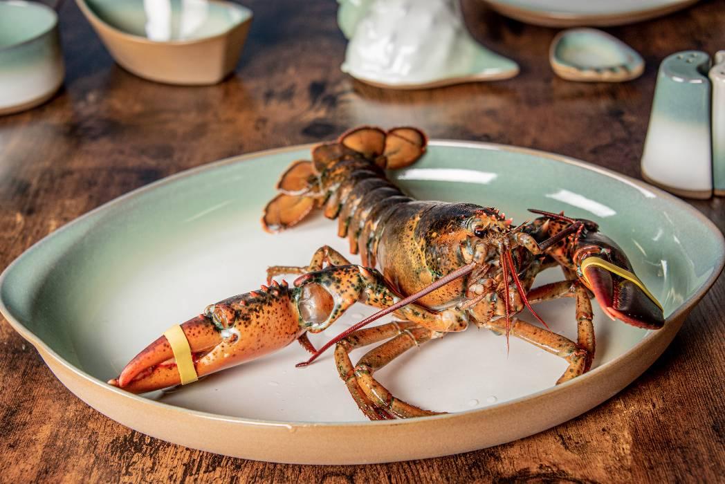 rhode-island-shellfish-company-001