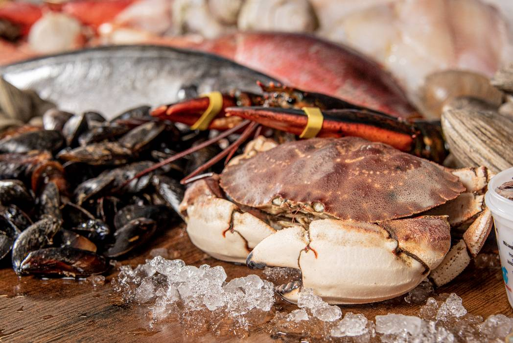 rhode-island-shellfish-company-018