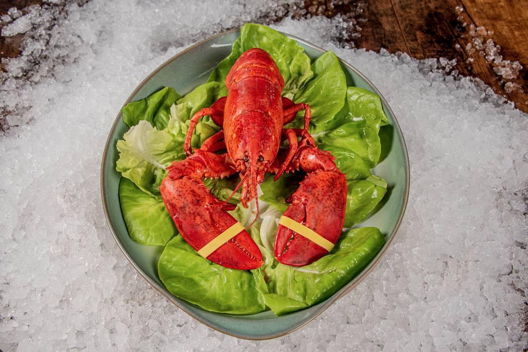 rhode-island-shellfish-company-052