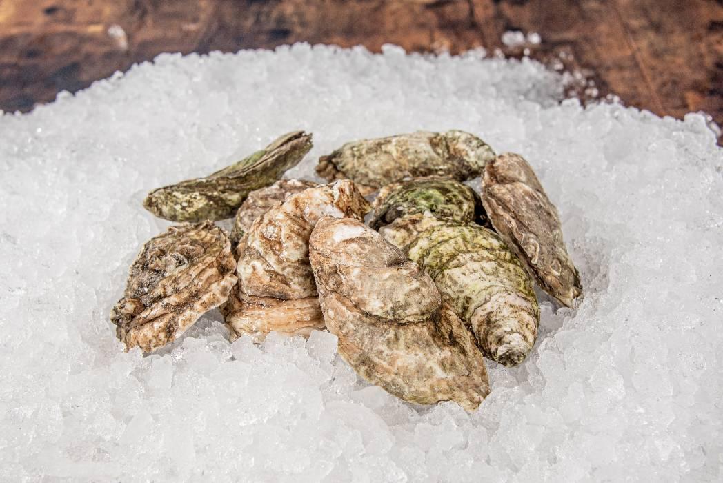 rhode-island-shellfish-company-069