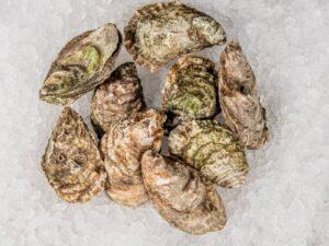 Oysters (East Beach)